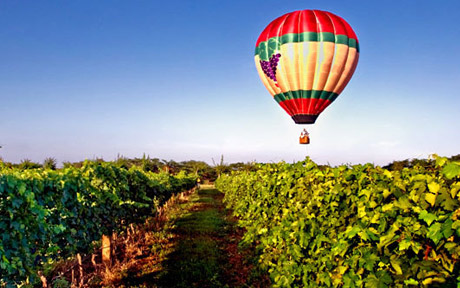 Balloon-over-the-Vineyards